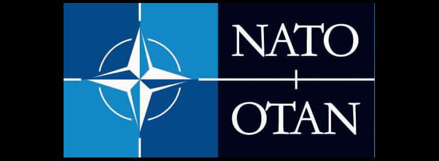 NATO Review: Hozint's CEO Edoardo Camilli analyzes Paris attacks